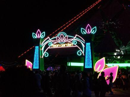 Neon Garden