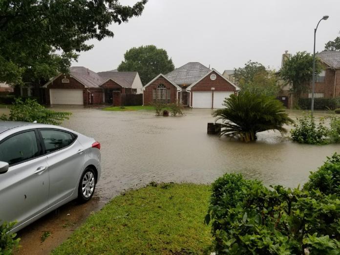 Neighborhood Flooding 2