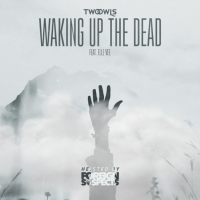 Foreign Suspects wake up the dead with new remix!