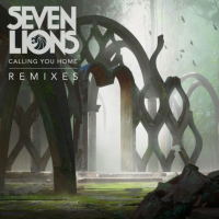"Seven Lions Releases ""Calling You Home"" Remixes on Ophelia Records"