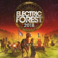 Thirteen Days in the Forest - Electric Forest 2018