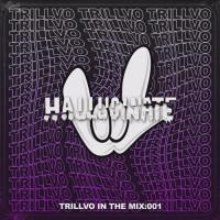 TRILLVO - In the Mix: 001 Artist Spotlight - Hallucinate