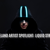 WOBBLELAND Artist Spotlight: Liquid Stranger