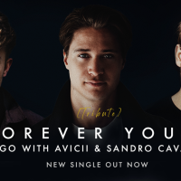 "Avicii We've Been Thinking of You...""Forever Yours"""