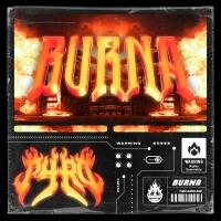 PYRO - BURNA [TRILLVO Premiere]